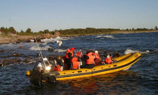 Enjoy Diving Trips & Lessons In Tallinn, Harju Maakond