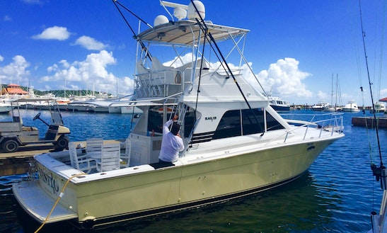 Charters To Palomino Or Icaco Island On 38' Motor Yacht In Fajardo, Puerto Rico
