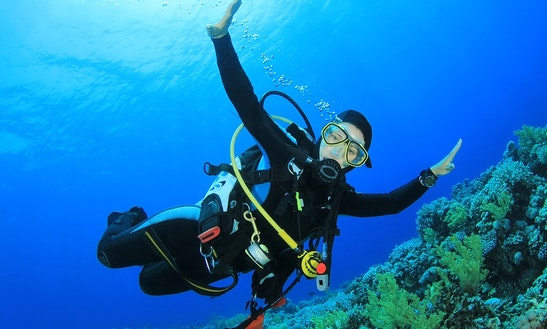 Enjoy Diving Trips And Courses In Carvoeiro, Portugal
