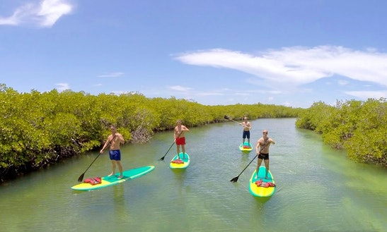 Paddleboard Rental In Key West, Florida
