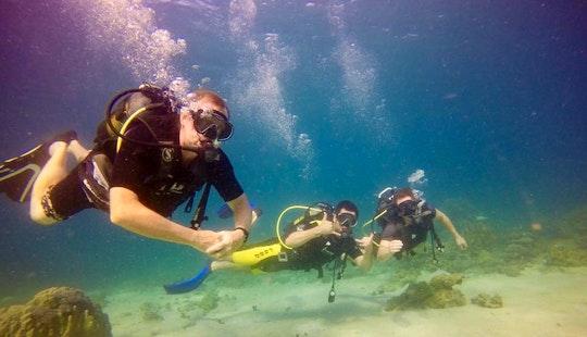 Enjoy Diving In Nosy Be, Madagascar