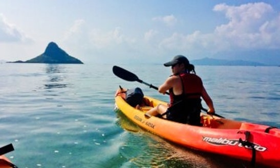Kayak Tour And Single Kayak Rental In Laie, Hawaii