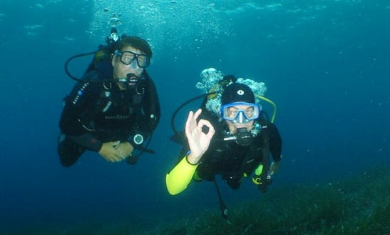Enjoy Diving Trips And Courses In Port La Napoule, France