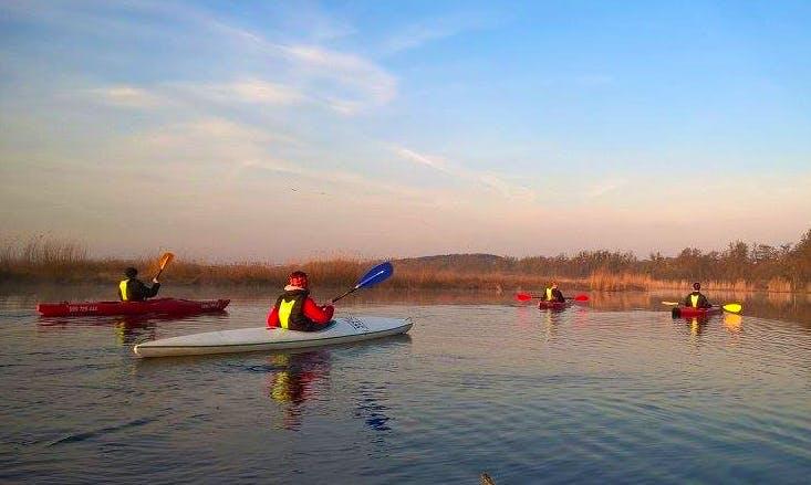 Daily Single Kayak Rental in Kołbaskowo, Poland