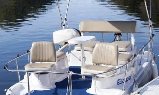 Pontoon Rental In Upper Lake, California