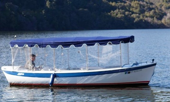Duffy Electric Boat Rental For 10 People In Upper Lake, California