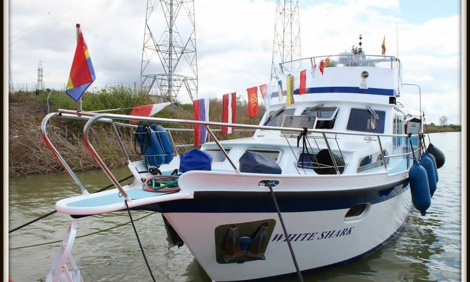 """Rent the """"Luna de Triana"""" Passenger Boat in Gelves"""