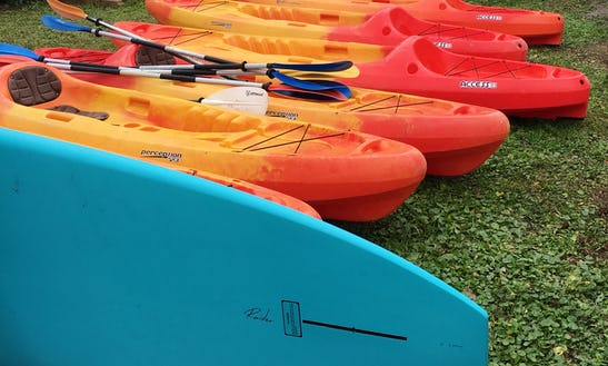 Kayak For Rent In Fernandina Beach