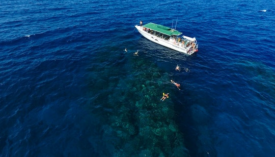 1/2 Day Snorkel Trips To Lanai From Kaanapali Beach