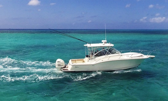 Charter 33 Ft Boston W. Cozumel, Quintana Roo, Mexico