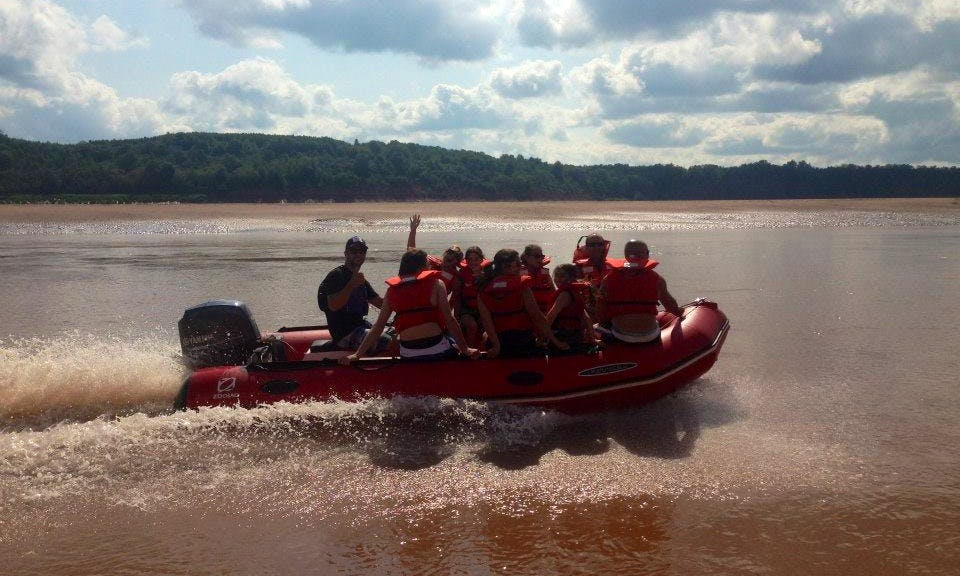 Guided River Tour on the Shubenacadie River