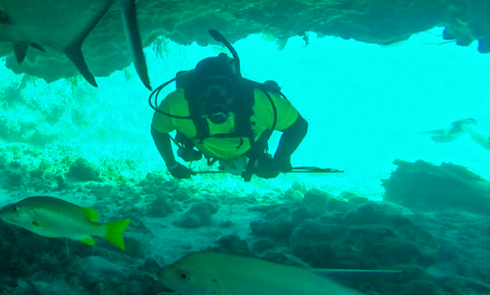 Enjoy Diving In Cockburn Harbour, Turks And Caicos Islands