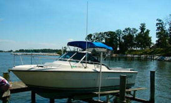 25' Tiara Pursuit Fishing Boat Rental In Ucluelet, Canada