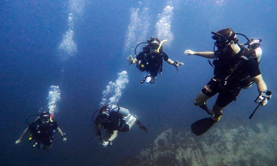 Enjoy Diving in Tambon Ko Tao, Thailand