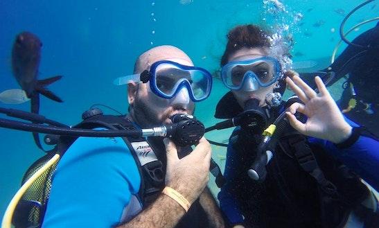 Enjoy Diving Trips In Muğla, Turkey