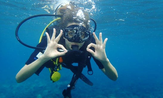 Enjoy Diving Trips & Lessons In Abang, Bali
