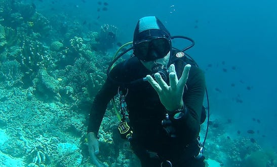 Enjoy Diving In North Sulawesi, Indonesia