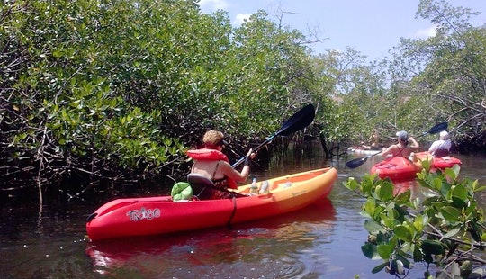 Single Kayak Rental In Fort Lauderdale, Florida