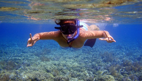 Enjoy Snorkeling Tours In Gerokgak, Bali!