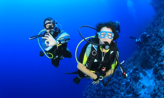 Enjoy Diving In Wanea, Indonesia