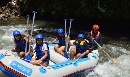 Enjoy Rafting Trips in Ubud or Telaga waja, Bali