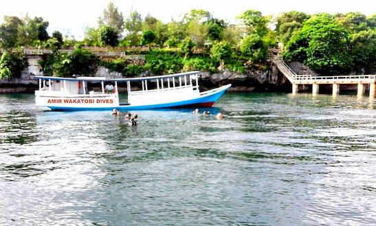 Scuba Diving Trips In Sulawesi Tenggara, Indonesia
