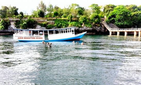Scuba Diving Trips In Sulawesi Tenggara, Indonesia