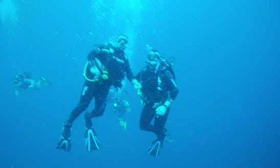 Enjoy Diving Trips In Randburg, Gauteng