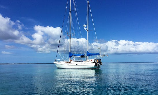 Captained Charter 41' Morgan Crusing Monohull In Central Abaco, Bahamas