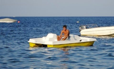 Rent a Paddle Boat - lifejackets included