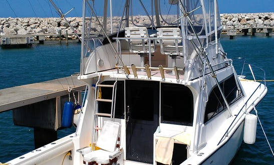 Motor Yacht Fishing Charter In Puerto Plata