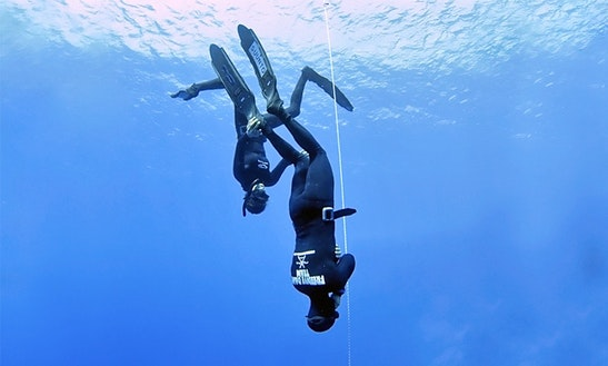 Enjoy Free Fall Diving In Split, Croatia