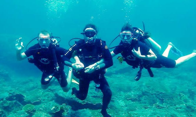 Enjoy Diving Courses in Pretoria, Gauteng