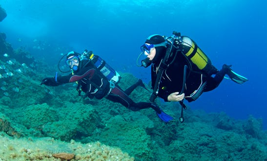 Enjoy Diving Courses In Germiston, Gauteng