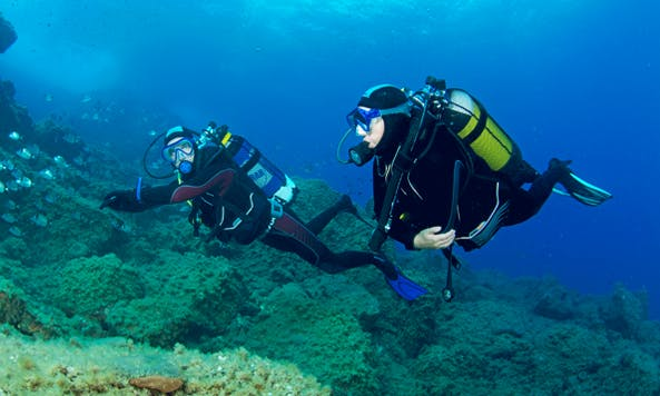 Enjoy Diving Courses in Germiston, Gauteng