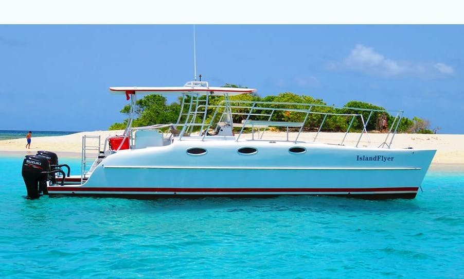 Snorkeling, swimming with turtles, & lunch at famous bar & restaurant in US and British Virgin Islands