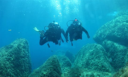 Enjoy Scuba Diving In Ajaccio, France