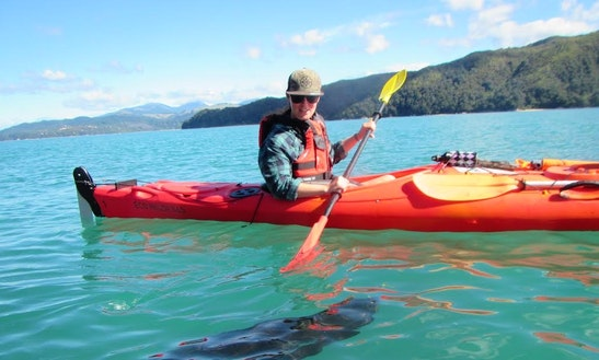 Tandem Kayak Rental & Tours In Marahau, New Zealand