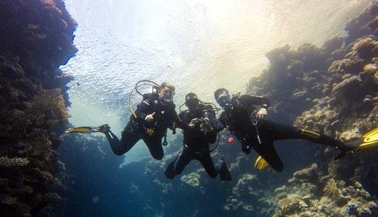 Exciting Diving Adventure In South Sinai Governorate, Egypt