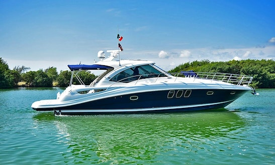 Searay 48 Sundancer 2011