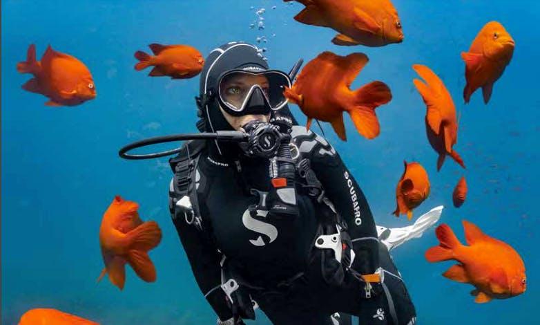 Enjoy Diving Courses in Enschede, Netherlands