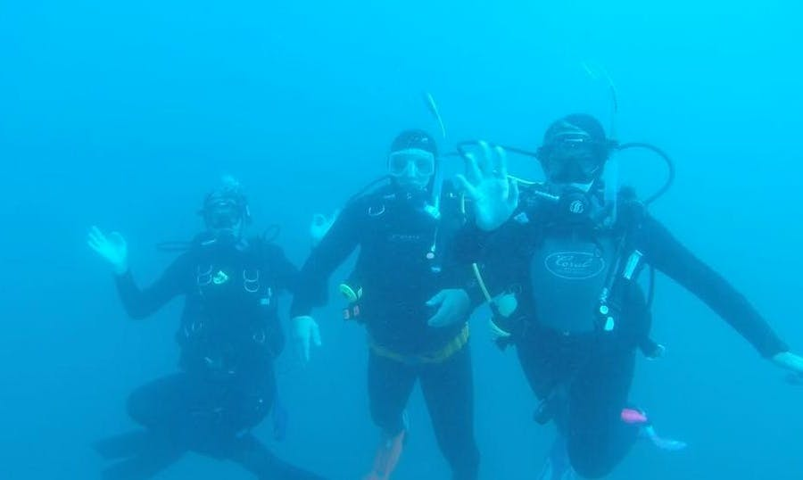 Enjoy Diving Courses in East London, South Africa
