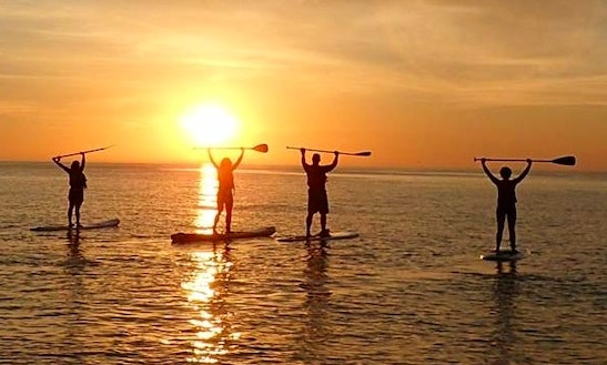 Enjoy Stand Up Paddle Surfing Lessons The Hague, Netherlands