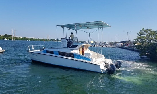 Dolphin Watch And Snorkel Tour On 31'