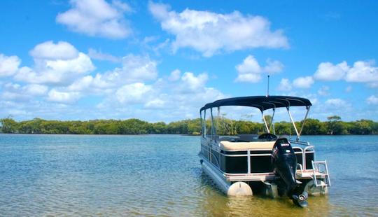 Hire 25' Tropical Performance Pontoon In Gold Coast, Australia