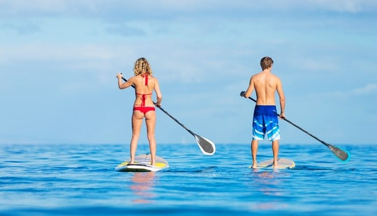 Paddleboard Rental In Le Carbet, Martinique