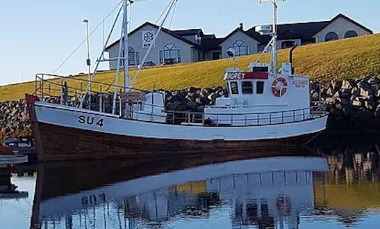Private & Public Charters From Reykjanesvegur, Iceland