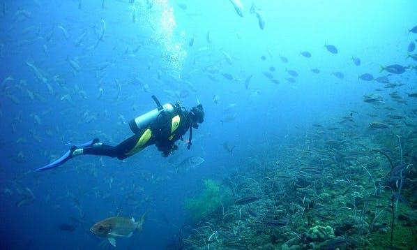 Diving Trip and Courses in București, Romania