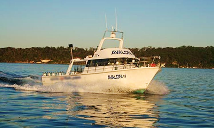 55' Sportfishing Charter in Merrylands