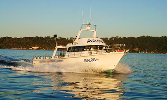 55' Head Boat Avalon Charter In Merrylands